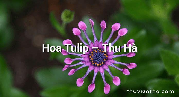 Hoa Tulip – Thu Hà