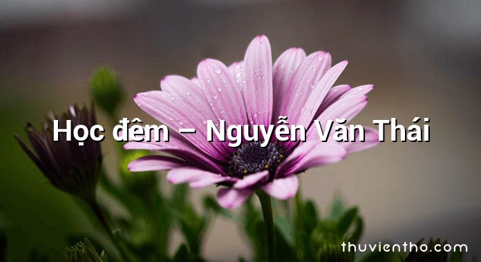 Học đêm – Nguyễn Văn Thái