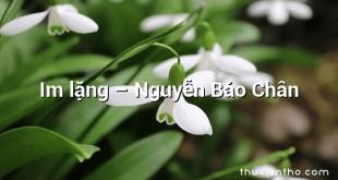 Im lặng  –  Nguyễn Bảo Chân