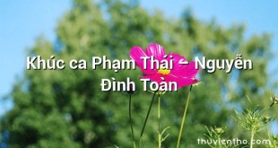 Khúc ca Phạm Thái  –  Nguyễn Đình Toàn