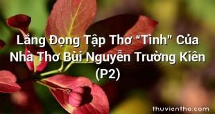 """Lắng Đọng Tập Thơ """"Tình"""" Của Nhà Thơ Bùi Nguyễn Trường Kiên (P2)"""