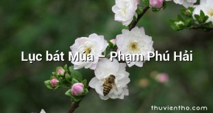 Lục bát Múa  –  Phạm Phú Hải