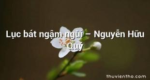 Lục bát ngậm ngùi  –  Nguyễn Hữu Quý