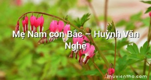 Mẹ Nam con Bắc – Huỳnh Văn Nghệ
