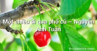 Một chiều đi qua phố cũ  –  Nguyễn Anh Tuấn