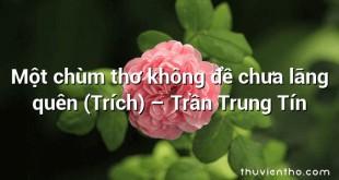Một chùm thơ không đề chưa lãng quên (Trích)  –  Trần Trung Tín