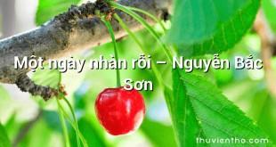 Một ngày nhàn rỗi  –  Nguyễn Bắc Sơn