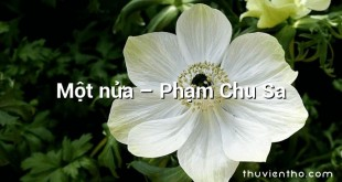 Một nửa  –  Phạm Chu Sa