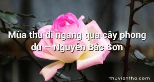 Mùa thu đi ngang qua cây phong du  –  Nguyễn Bắc Sơn