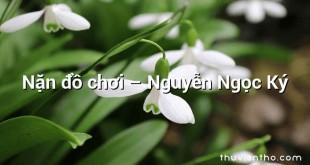 Nặn đồ chơi  –  Nguyễn Ngọc Ký