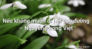 Nếu không muốn đi hết con đường  –  Nguyễn Phong Việt