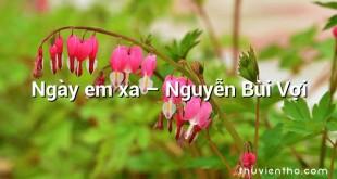 Ngày em xa  –  Nguyễn Bùi Vợi