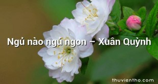 Ngủ nào ngủ ngon – Xuân Quỳnh