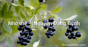 Nhớ mẹ  –  Nguyễn Đăng Trình