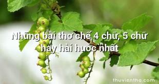 Những bài thơ chế 4 chữ, 5 chữ hay hài hước nhất