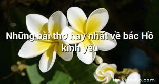 Những bài thơ hay nhất về bác Hồ kính yêu