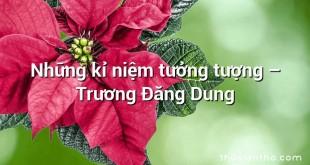 Những kỉ niệm tưởng tượng  –  Trương Đăng Dung