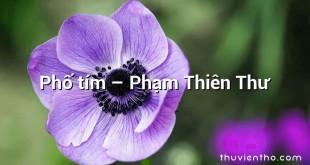 Phố tím  –  Phạm Thiên Thư