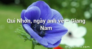 Qui Nhơn, ngày anh về – Giang Nam