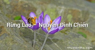 Rừng Lào  –  Nguyễn Đình Chiến