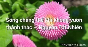 Sông chẳng thể khi không vươn thành thác – Nguyễn Tất Nhiên