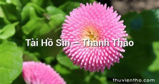 Tài Hồ Sìn  –  Thanh Thảo