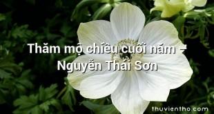 Thăm mộ chiều cuối năm  –  Nguyễn Thái Sơn