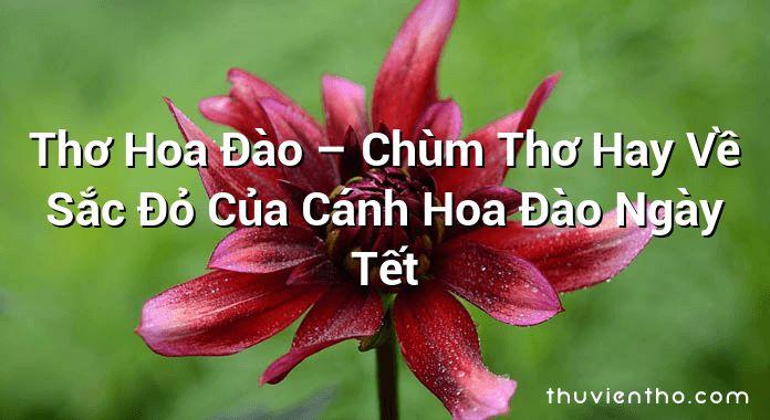 Thơ Hoa Đào – Chùm Thơ Hay Về Sắc Đỏ Của Cánh Hoa Đào Ngày Tết