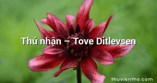 Thú nhận  –  Tove Ditlevsen