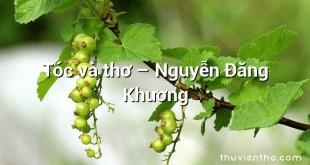 Tóc và thơ  –  Nguyễn Đăng Khương