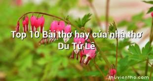 Top 10 Bài thơ hay của nhà thơ Du Tử Lê