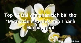 """Top 12 Bài văn phân tích bài thơ """"Mùa xuân nho nhỏ"""" của Thanh Hải hay nhất"""