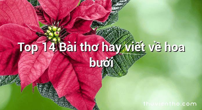 Top 14 Bài thơ hay viết về hoa bưởi
