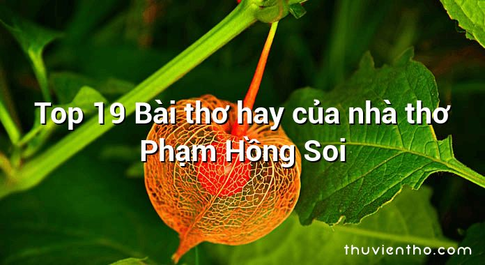 Top 19 Bài thơ hay của nhà thơ Phạm Hồng Soi