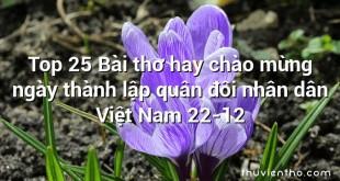 Top 25 Bài thơ hay chào mừng ngày thành lập quân đôi nhân dân Việt Nam 22-12