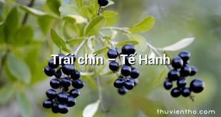 Trái chín – Tế Hanh