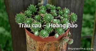Trầu cau – Hoàng Bảo