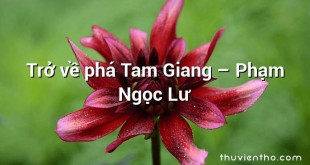 Trở về phá Tam Giang  –  Phạm Ngọc Lư