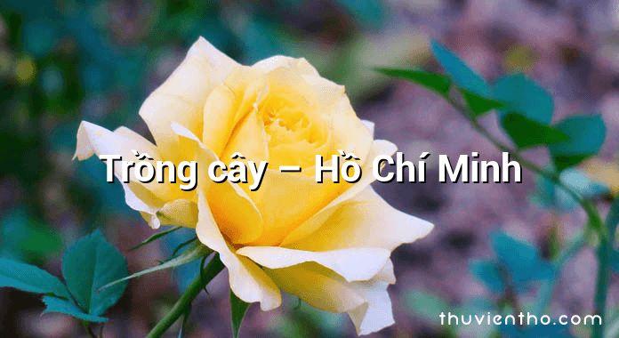 Trồng cây – Hồ Chí Minh