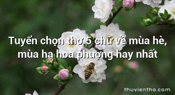 Tuyển chọn thơ 5 chữ về mùa hè, mùa hạ hoa phượng hay nhất