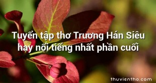 Tuyển tập thơ Trương Hán Siêu hay nổi tiếng nhất phần cuối