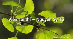 Viên sỏi thí  –  Nguyễn Sỹ Tế