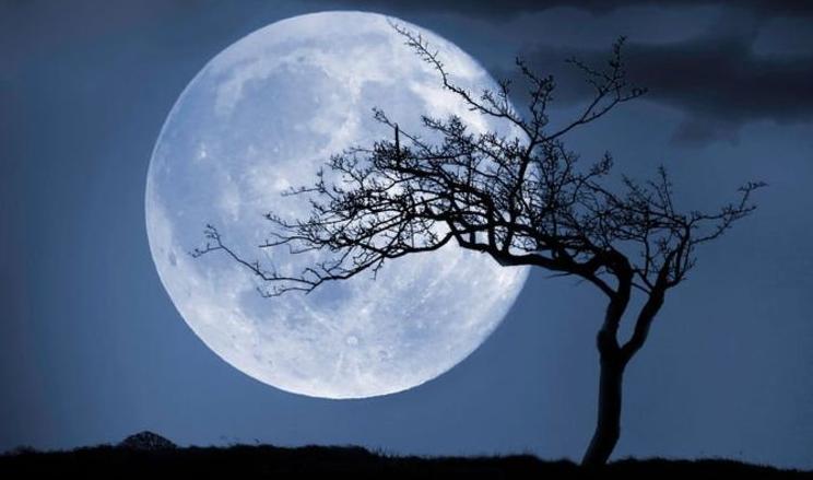 ngam trang ho chi minh - Ngắm trăng - Hồ Chí Minh