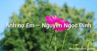 Anh nợ Em – Nguyễn Ngọc Đĩnh