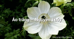 Áo trắng – Nguyễn Thủy
