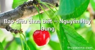 Bao điều chưa biết – Nguyễn Huy Dung