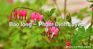 Bão lòng – Phạm Đình Luyến
