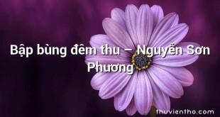Bập bùng đêm thu – Nguyễn Sơn Phương