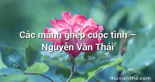 Các mảnh ghép cuộc tình – Nguyễn Văn Thái