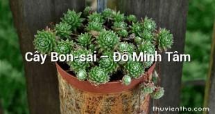Cây Bon-sai – Đỗ Minh Tâm